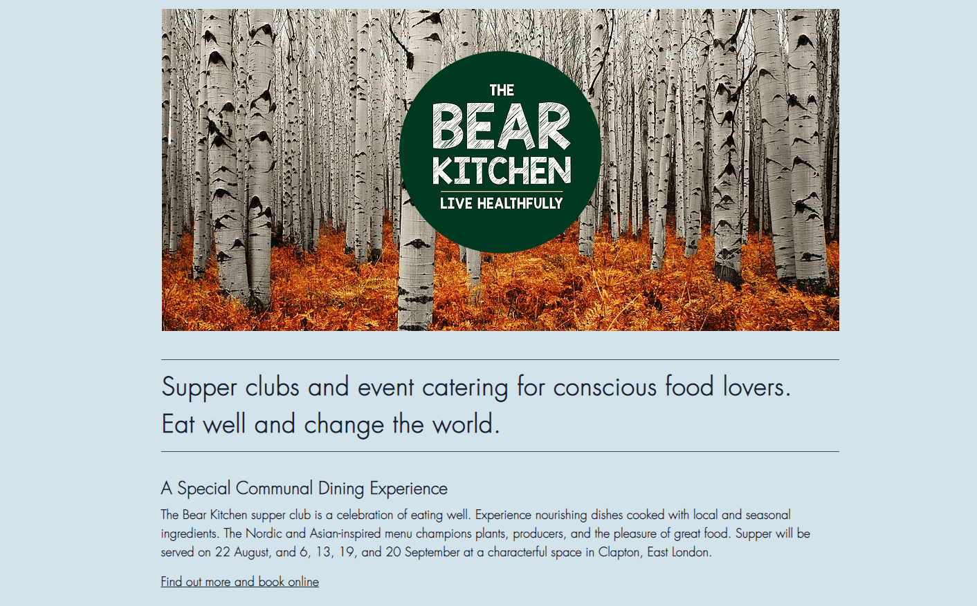 Screen Shot 2018 10 31 at 16.48.35 - The Bear Kitchen - Web, Flyer and Poster Copywriting